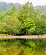 View of Loch Lubnaig, Scotland, U.K.